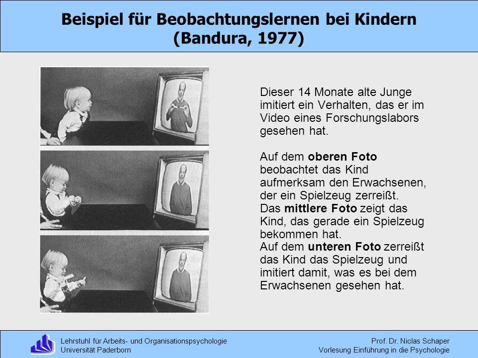 Beispiel für Beobachtungslernen bei Kindern (Bandura, 1977)