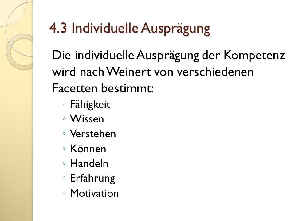 4.3 Individuelle Ausprägung