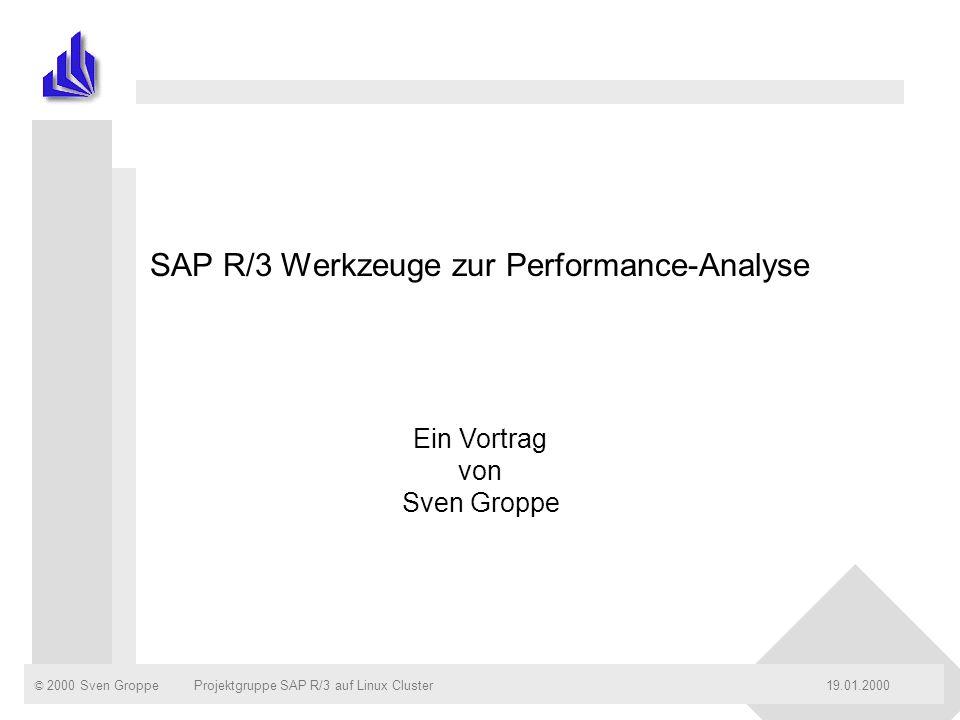 SAP R/3 Werkzeuge zur Performance-Analyse