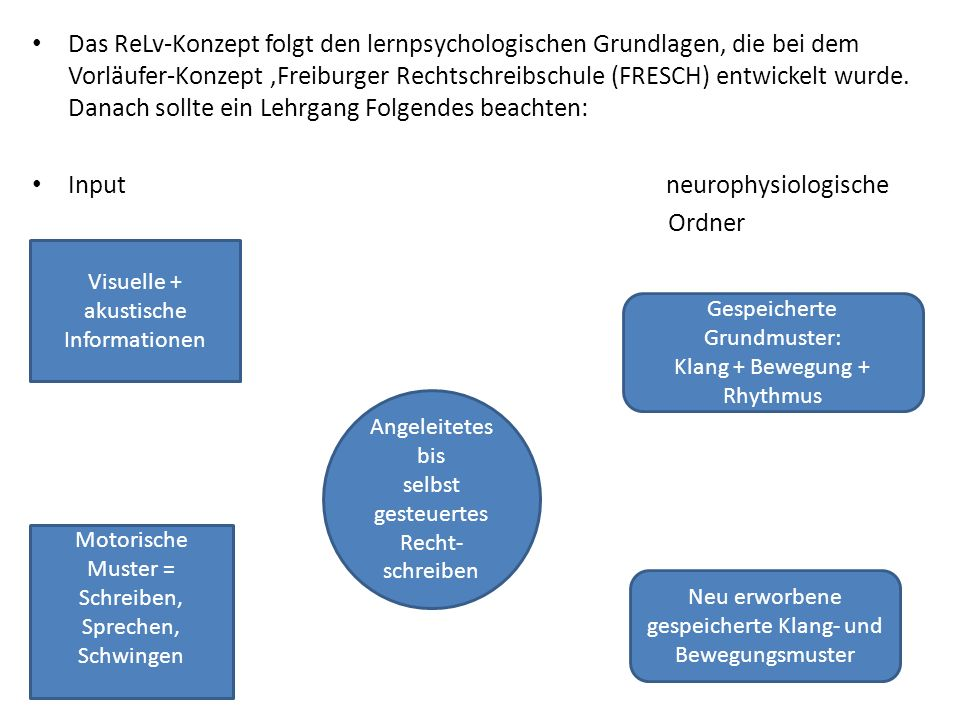 Input neurophysiologische Ordner