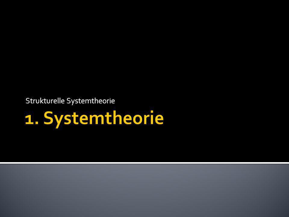 Strukturelle Systemtheorie