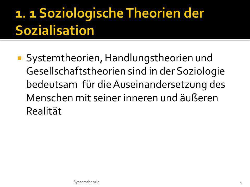 1. 1 Soziologische Theorien der Sozialisation