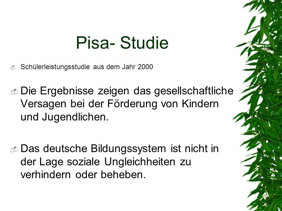 Pisa- Studie Schülerleistungsstudie aus dem Jahr 2000.