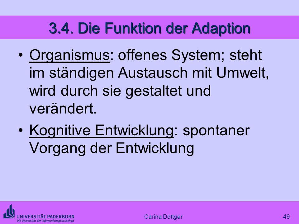 3.4. Die Funktion der Adaption