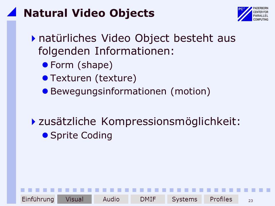 natürliches Video Object besteht aus folgenden Informationen: