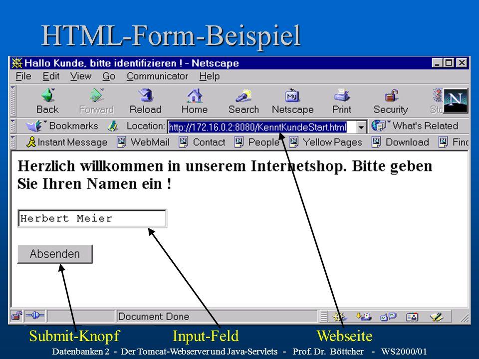 HTML-Form-Beispiel Submit-Knopf Input-Feld Webseite
