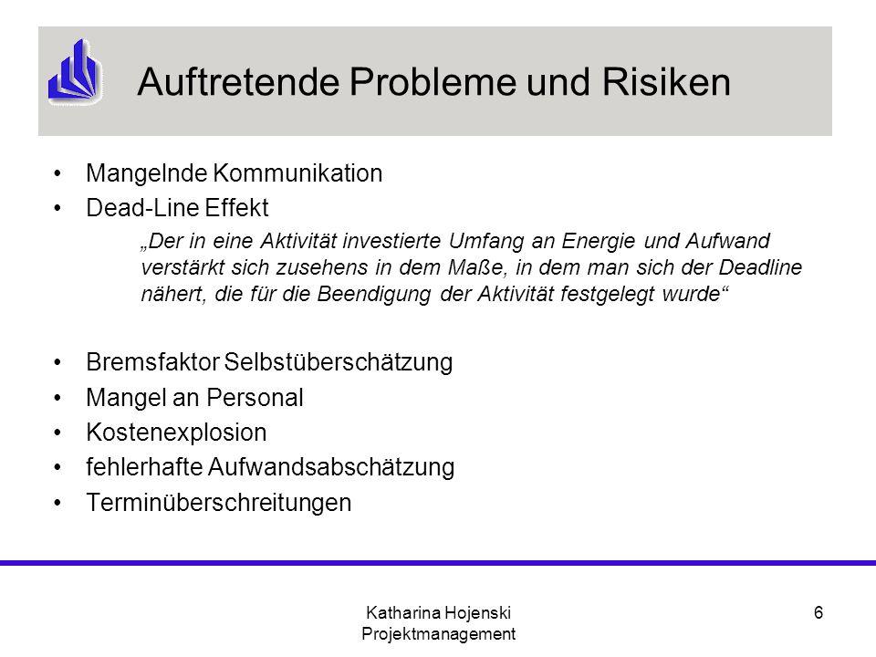 Auftretende Probleme und Risiken