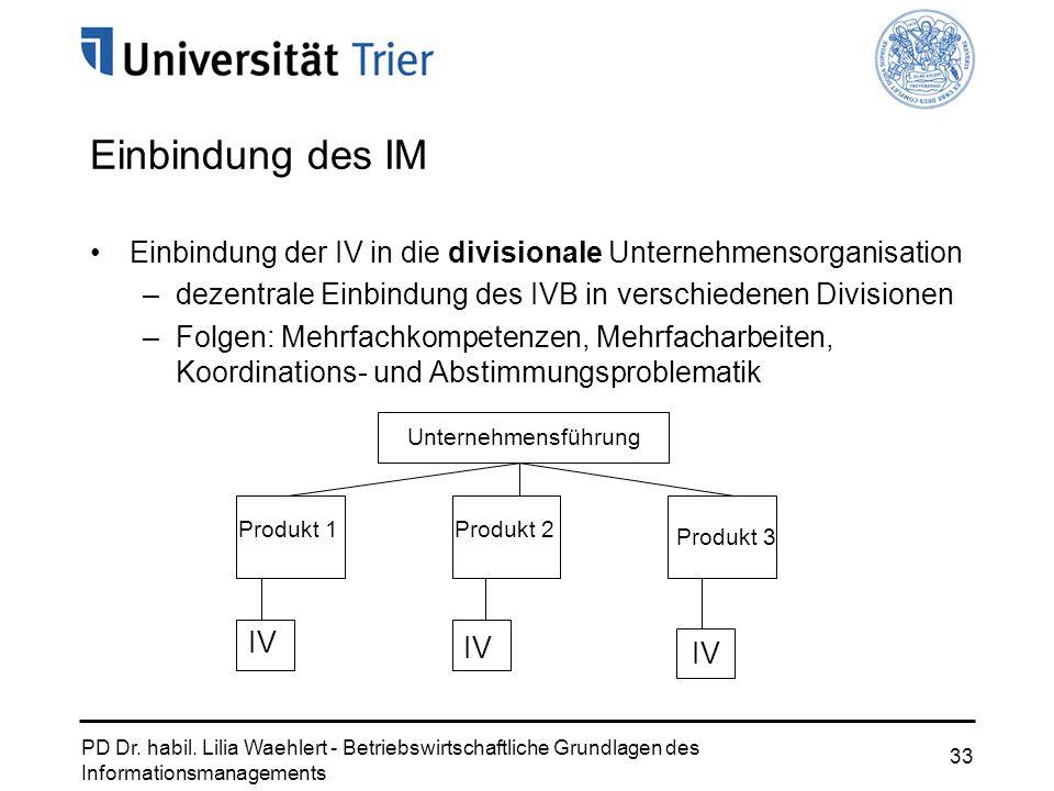 Einbindung des IM Einbindung der IV in die divisionale Unternehmensorganisation. dezentrale Einbindung des IVB in verschiedenen Divisionen.