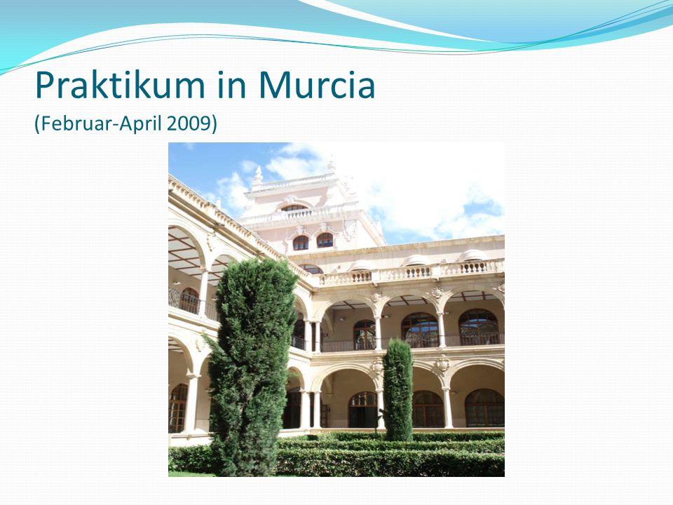 Praktikum in Murcia (Februar-April 2009)