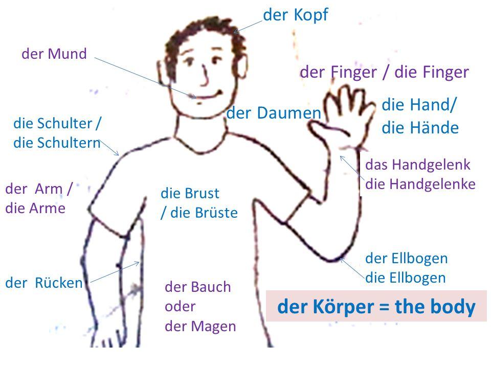 der Körper = the body der Kopf der Finger / die Finger