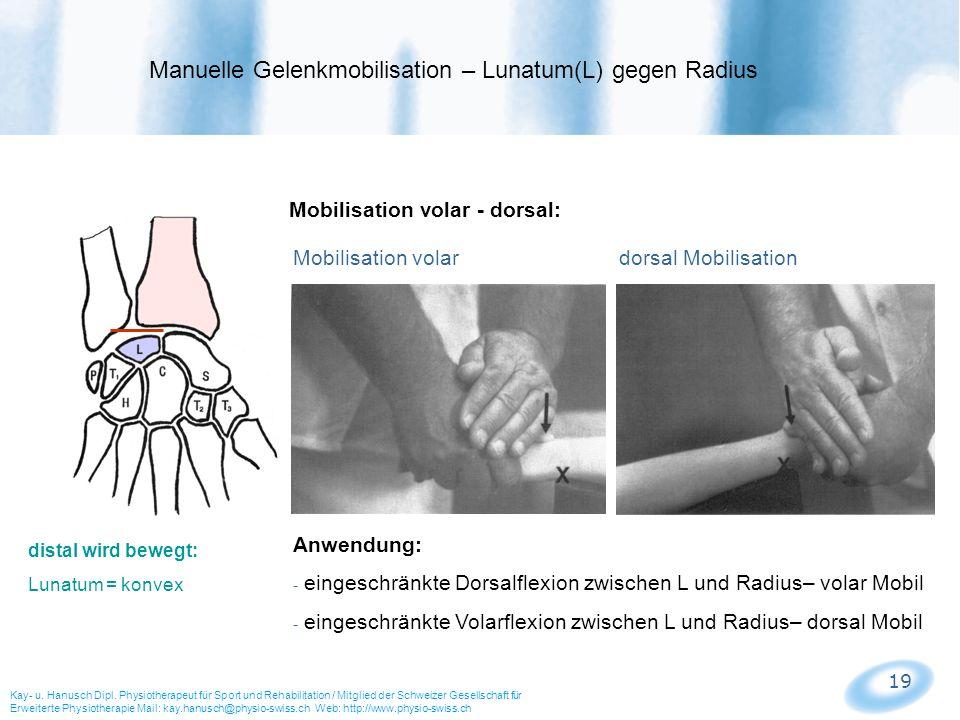 Manuelle Gelenkmobilisation – Lunatum(L) gegen Radius