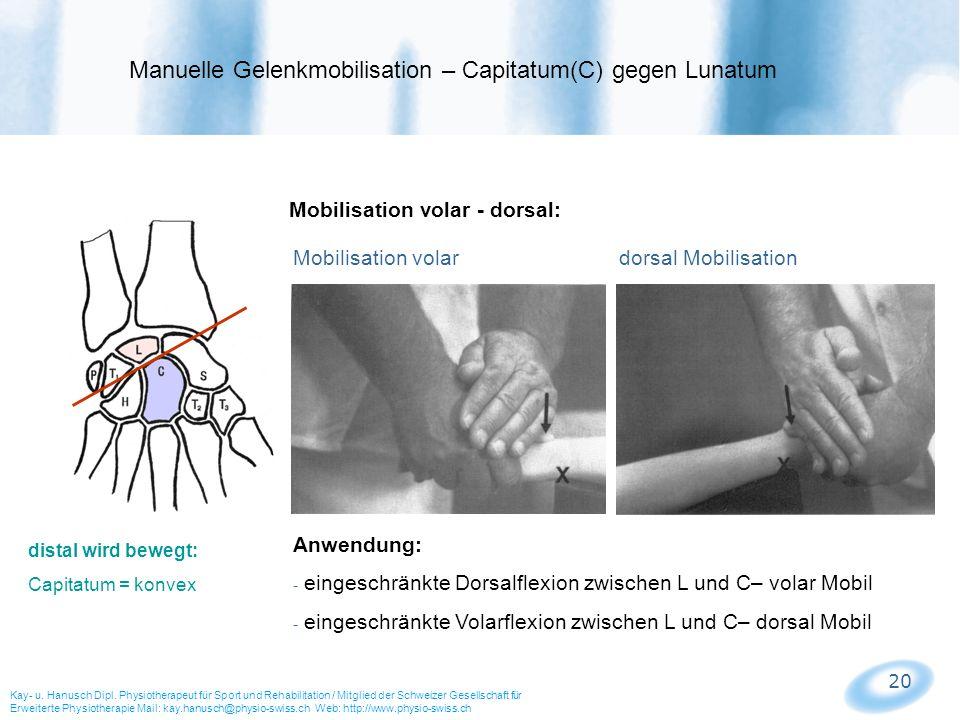 Manuelle Gelenkmobilisation – Capitatum(C) gegen Lunatum