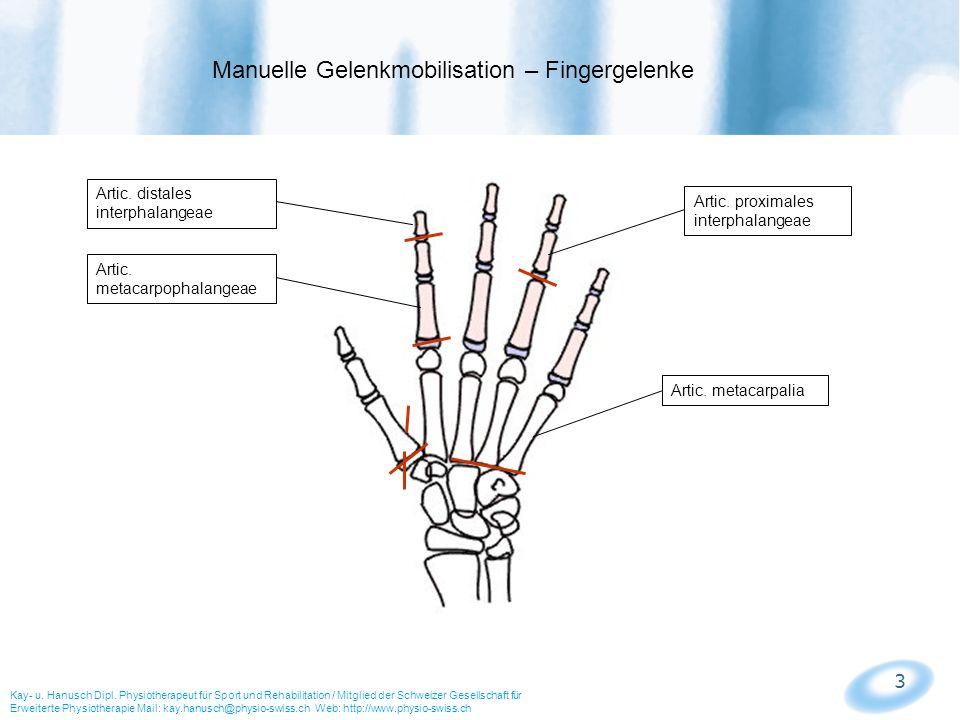 Manuelle Gelenkmobilisation – Fingergelenke