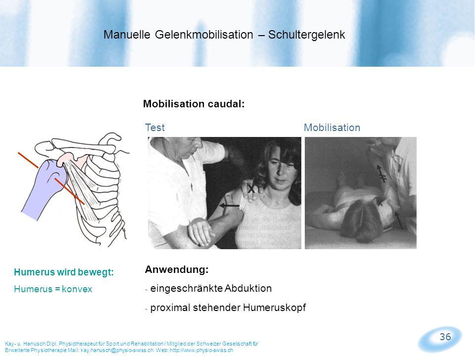Manuelle Gelenkmobilisation – Schultergelenk