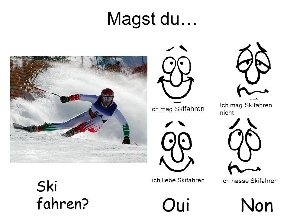 Magst du… Oui Non Ski fahren Ich mag Skifahren nicht