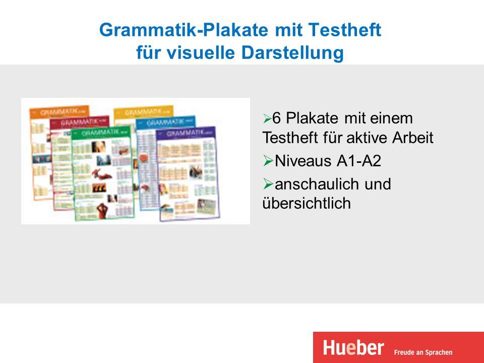 Grammatik-Plakate mit Testheft für visuelle Darstellung