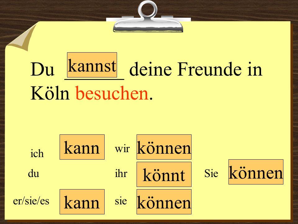 Du ______ deine Freunde in Köln besuchen.