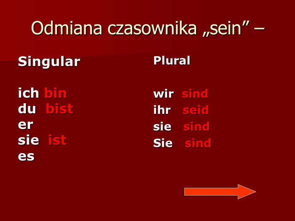 """Odmiana czasownika """"sein –"""