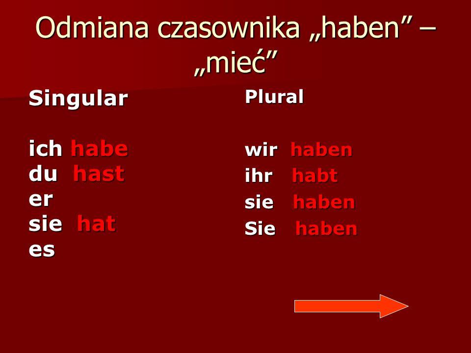 """Odmiana czasownika """"haben – """"mieć"""