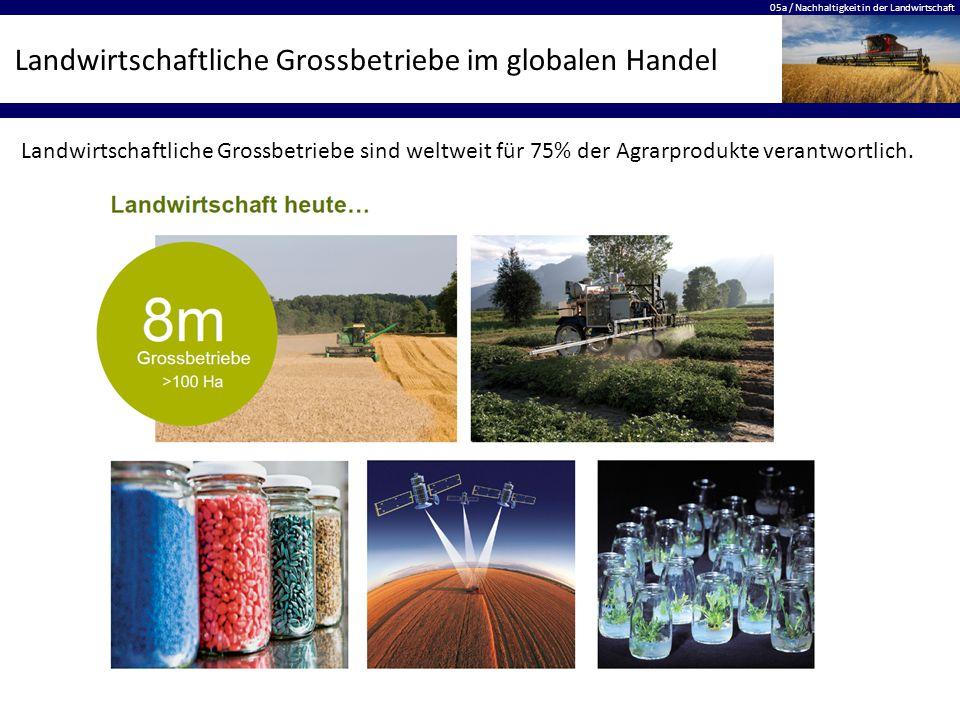 Landwirtschaftliche Grossbetriebe im globalen Handel