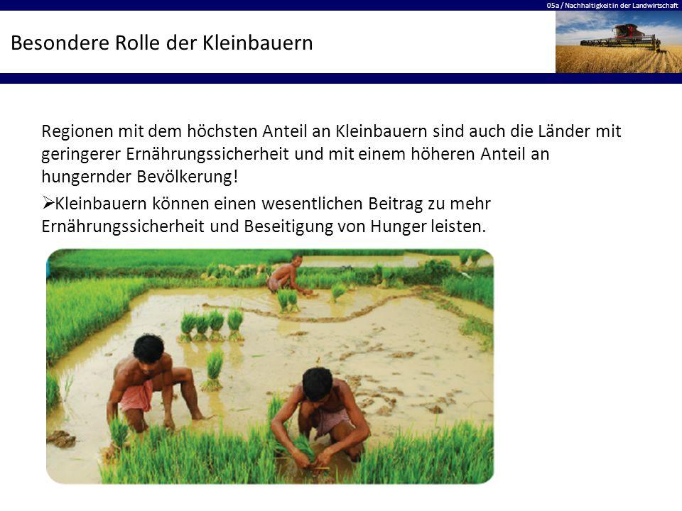 Besondere Rolle der Kleinbauern