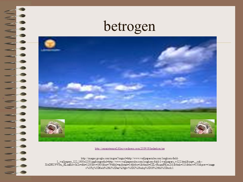 betrogen http://repairstemcell.files.wordpress.com/2009/08/hedgehog.jpg.