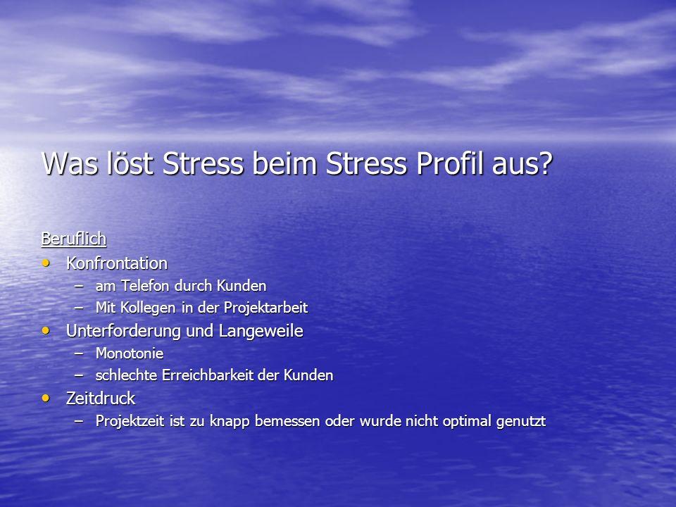 Was löst Stress beim Stress Profil aus