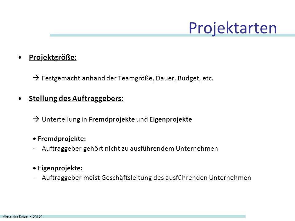 Projektarten Projektgröße: Stellung des Auftraggebers: