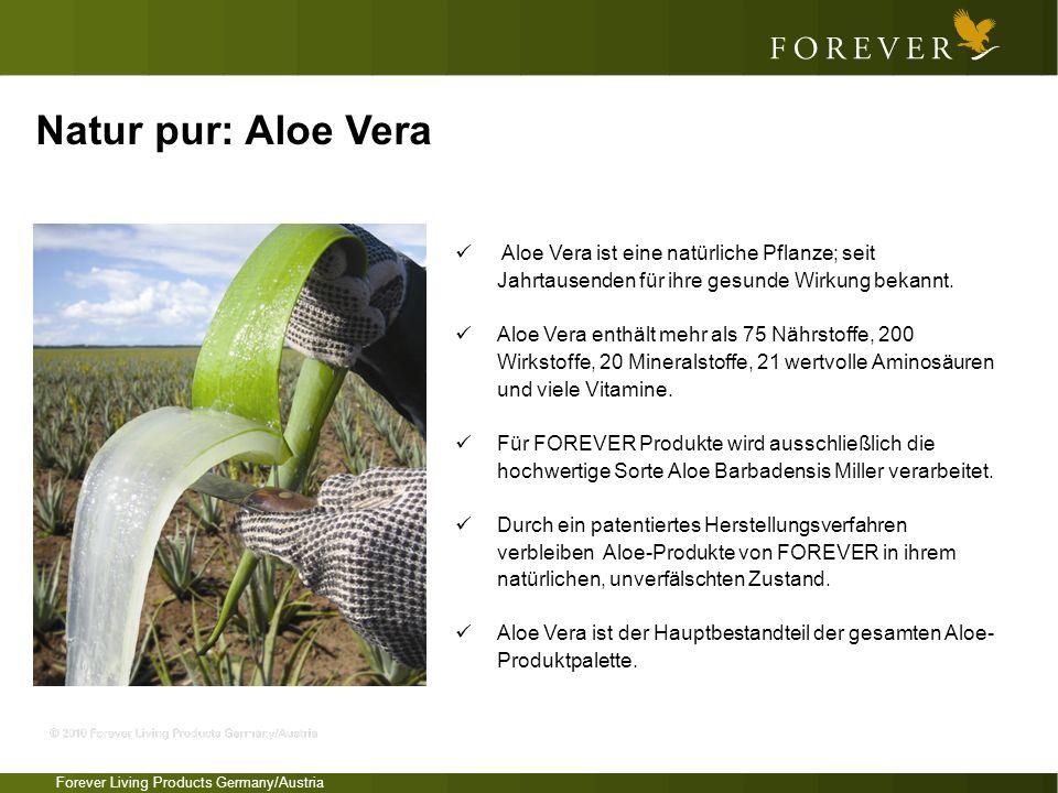 Natur pur: Aloe Vera Aloe Vera ist eine natürliche Pflanze; seit Jahrtausenden für ihre gesunde Wirkung bekannt.