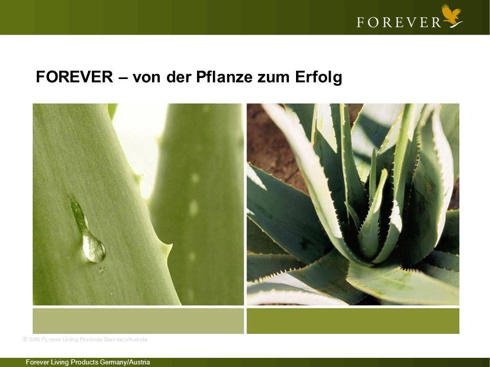 FOREVER – von der Pflanze zum Erfolg