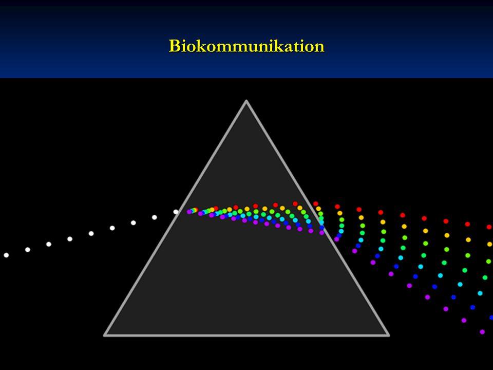 Biokommunikation