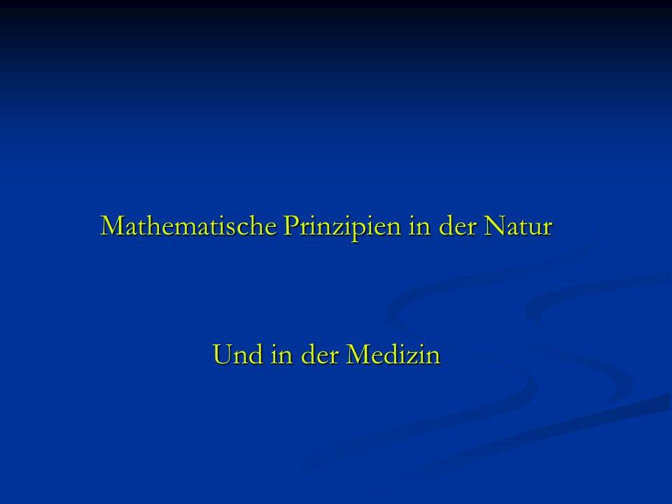 Mathematische Prinzipien in der Natur