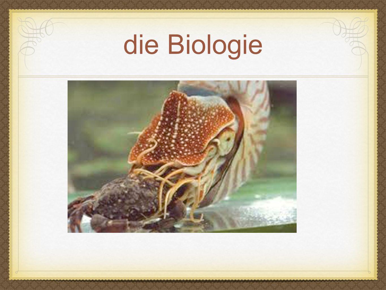 die Biologie