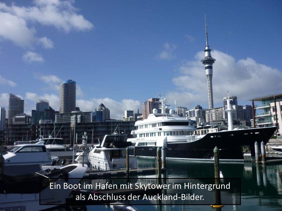 Ein Boot im Hafen mit Skytower im Hintergrund als Abschluss der Auckland-Bilder.
