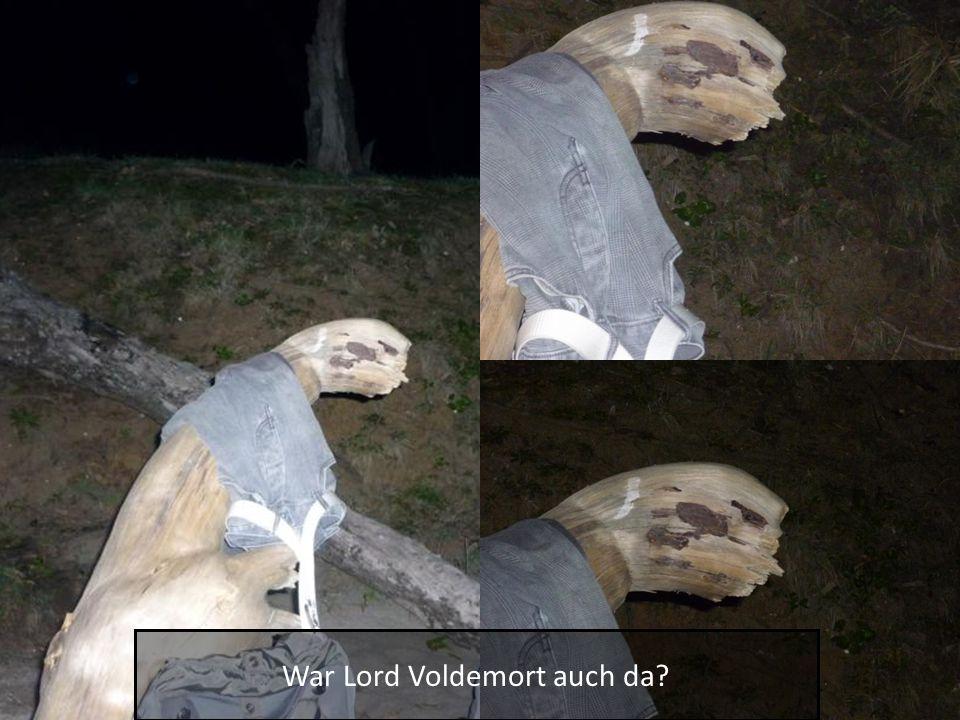 War Lord Voldemort auch da