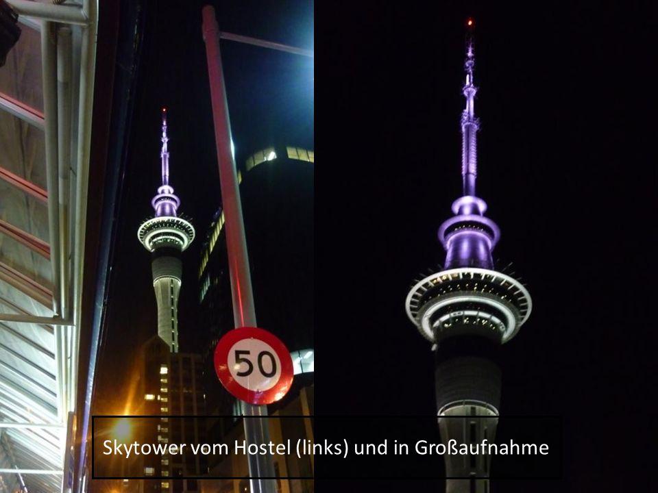 Skytower vom Hostel (links) und in Großaufnahme
