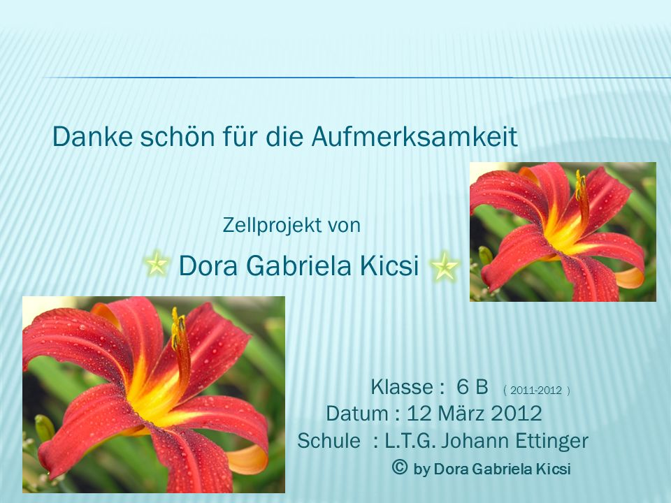 Danke schön für die Aufmerksamkeit Zellprojekt von Dora Gabriela Kicsi