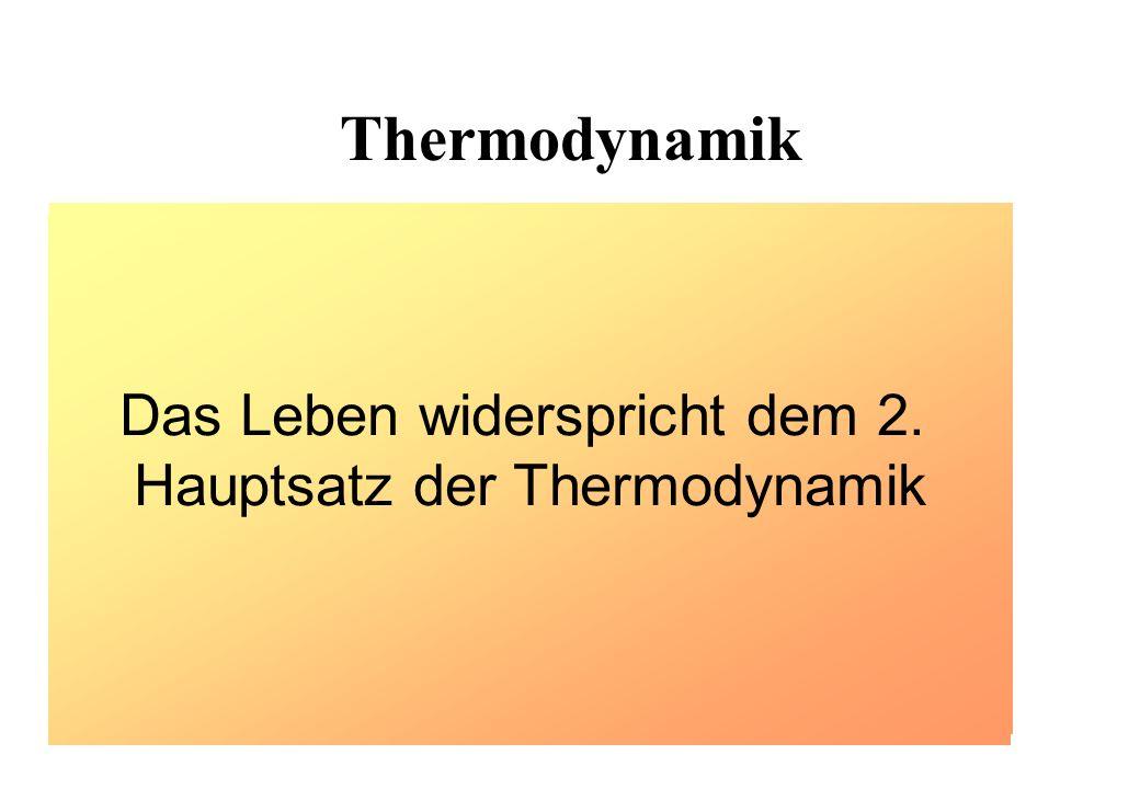 Das Leben widerspricht dem 2. Hauptsatz der Thermodynamik