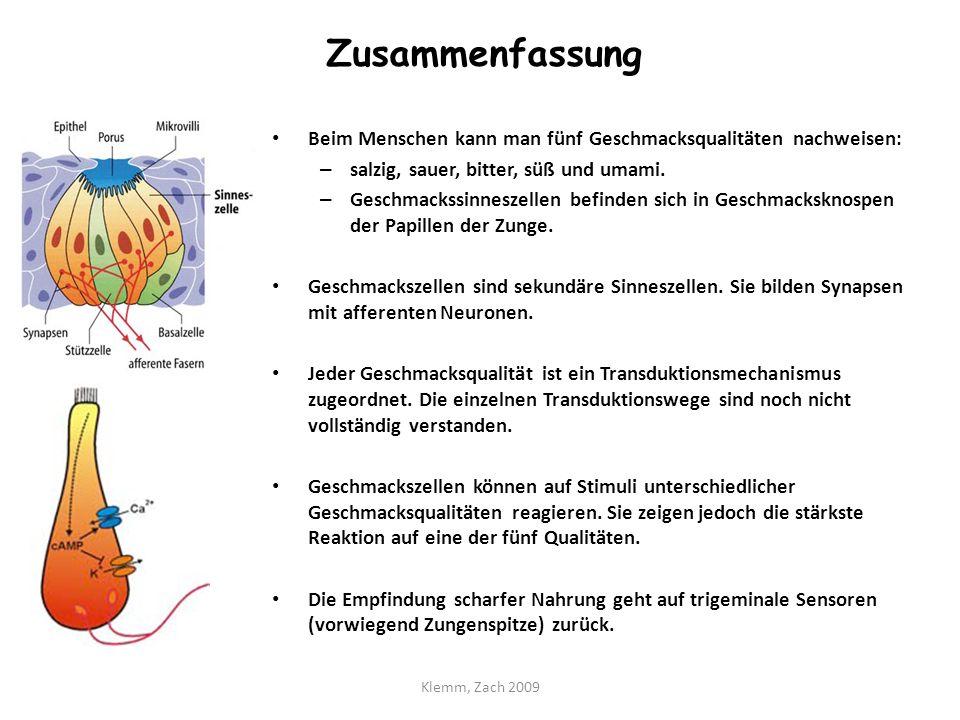 Charmant Sauer Geschmacksknospen Bilder - Menschliche Anatomie ...