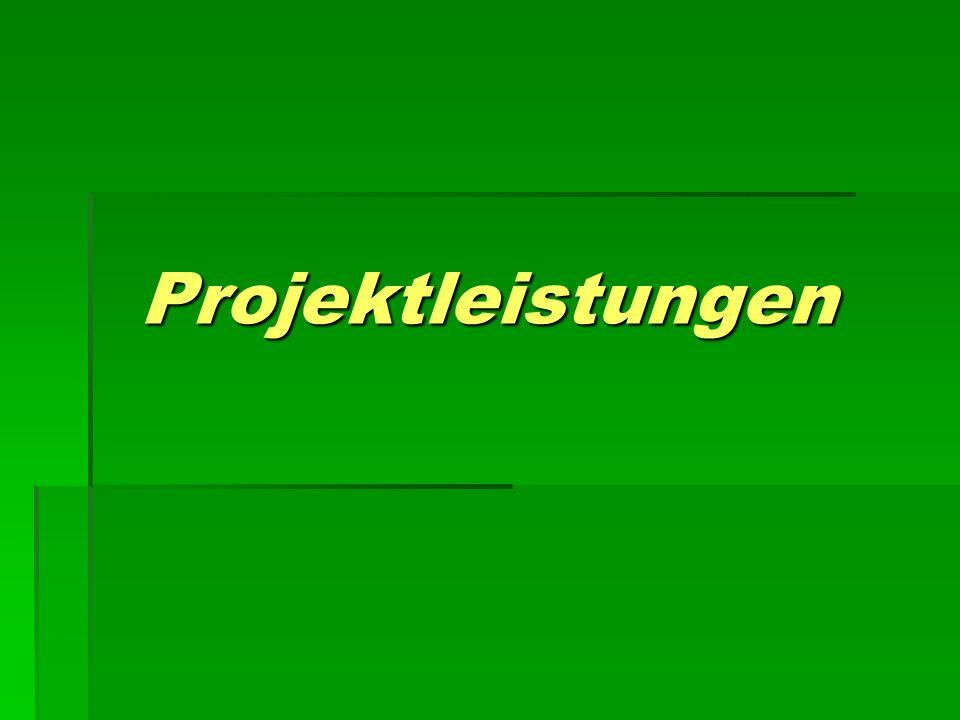 Projektleistungen