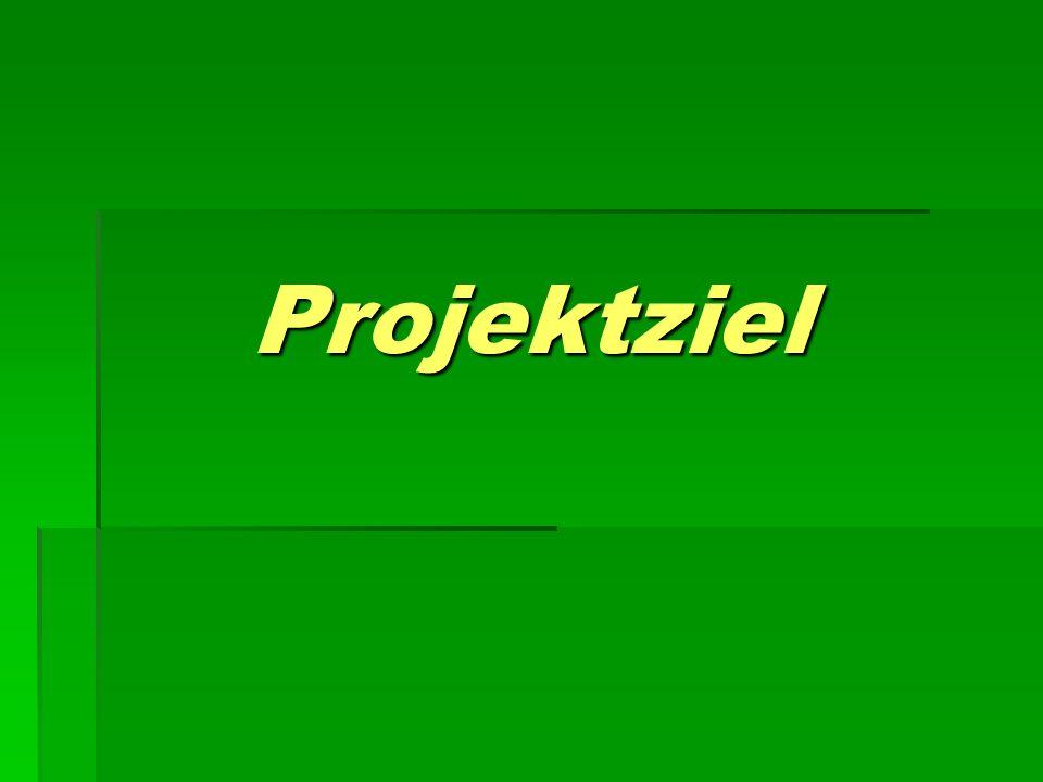 Projektziel