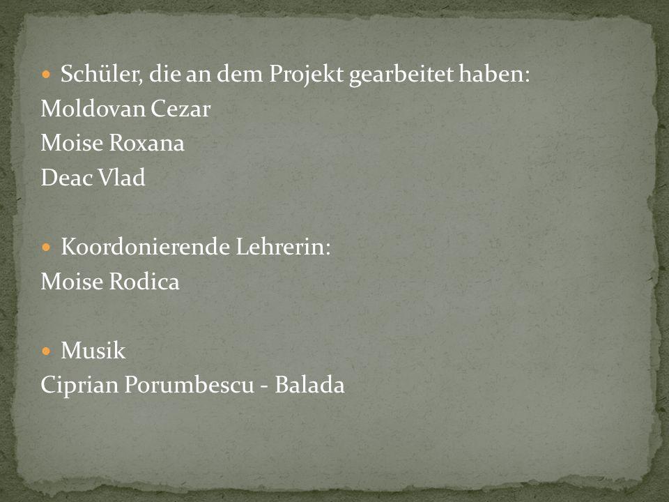 Schüler, die an dem Projekt gearbeitet haben:
