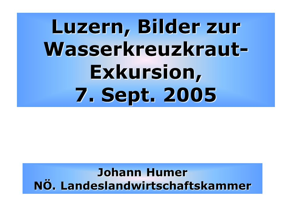 Luzern, Bilder zur Wasserkreuzkraut-Exkursion, 7. Sept. 2005