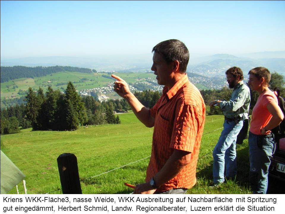 Kriens WKK-Fläche3, nasse Weide, WKK Ausbreitung auf Nachbarfläche mit Spritzung gut eingedämmt, Herbert Schmid, Landw.
