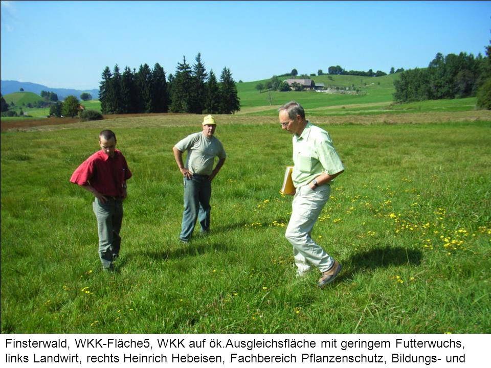Finsterwald, WKK-Fläche5, WKK auf ök