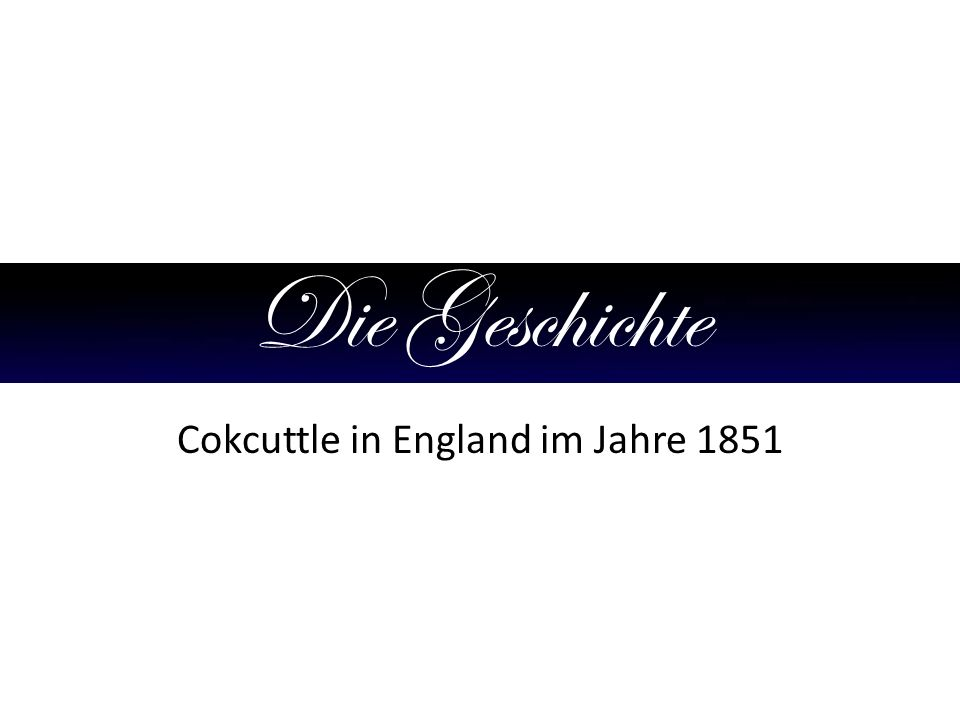Cokcuttle in England im Jahre 1851