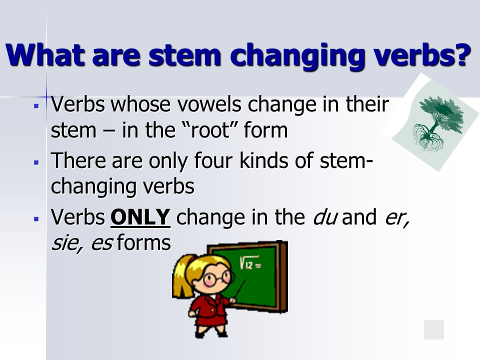 What are stem changing verbs