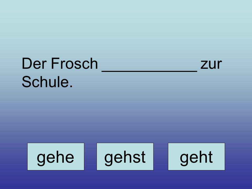 Der Frosch ___________ zur Schule.