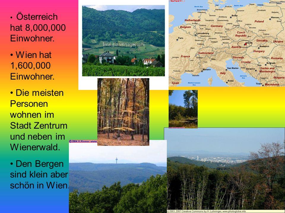 Die meisten Personen wohnen im Stadt Zentrum und neben im Wienerwald.