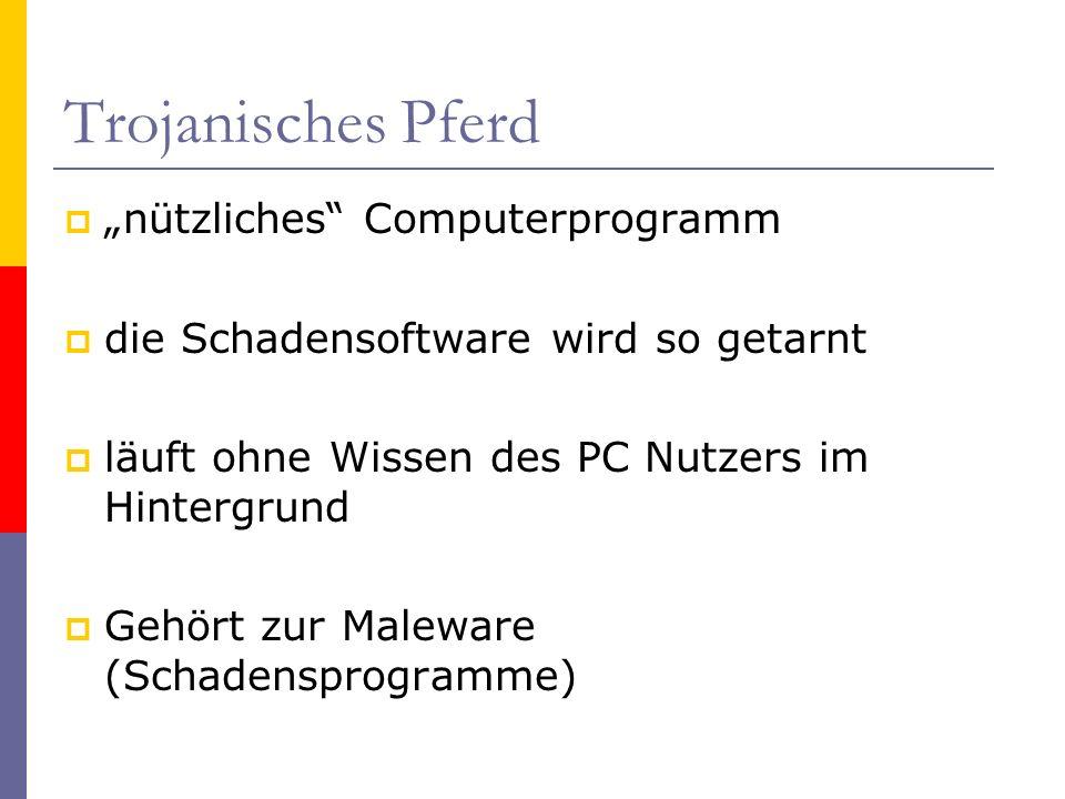 """Trojanisches Pferd """"nützliches Computerprogramm"""